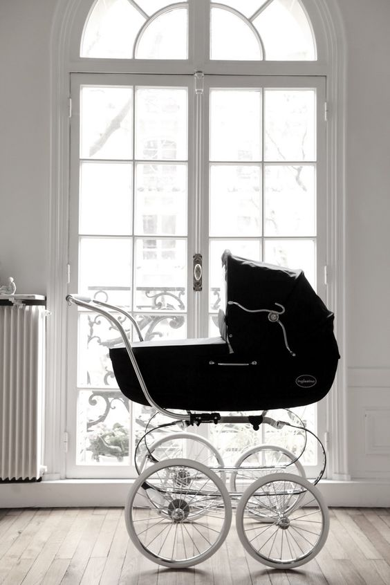 the fashion magpie stroller